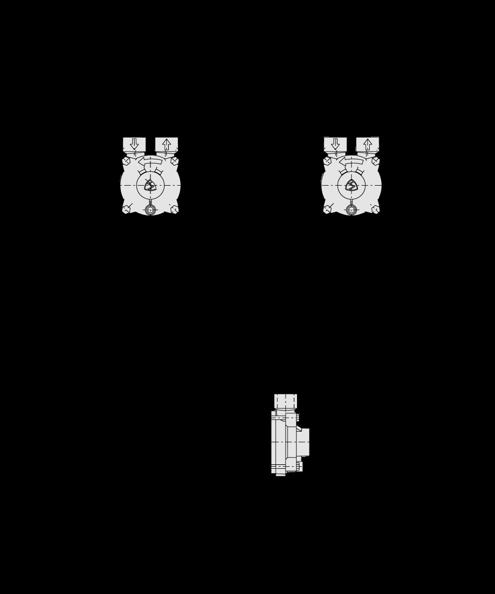 specifica tecina CX 44