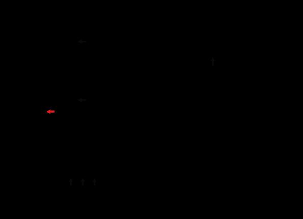 specifica tecina VP 660